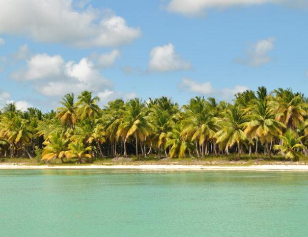 Saona Island Island